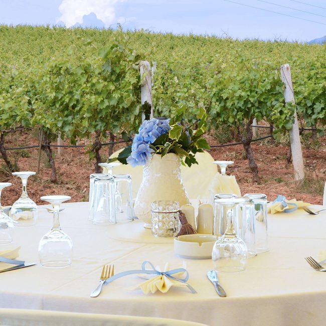 vineyard dinner αντίγραφο